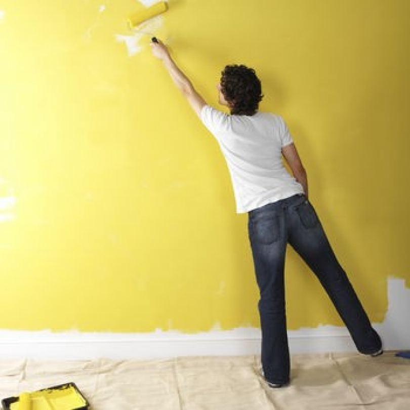 Краска для стен - современные виды и выбор лучшего варианта для качественной покраски вместе с экспертами